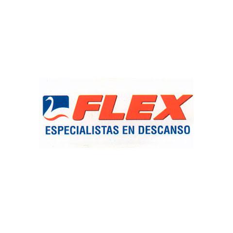 480_logo_Flex