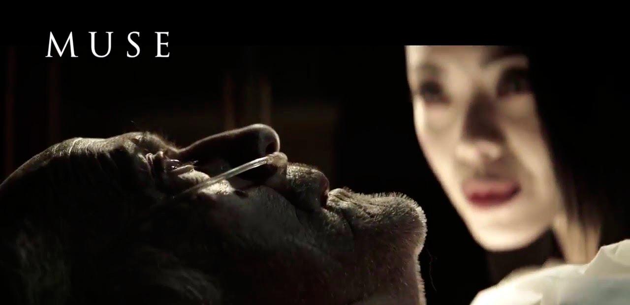 Muse Films Pablo Rosso Director de Fotografía